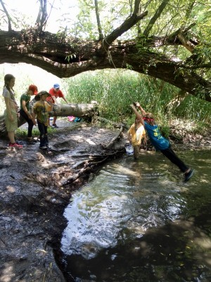 primary-Riveredge-Adventure-Challenge--Amazing-Race-Type-Fun-for-the-Whole-Family--1470693275