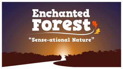 primary-Enchanted-Forest--Sense-ational-Nature-1475691752