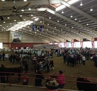 World Beef Expo