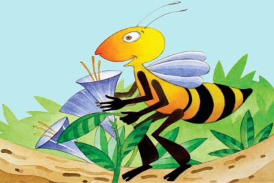 A Busy Bee: The Story of Bella the Honey Bee
