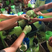 Plant Nite at Riverwest Public House Cooperative