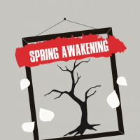 Spring Awakening -The Musical