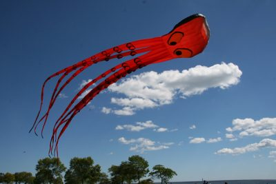 The Wilde Subaru Family Kite Festival..A WHALE OF A TIME