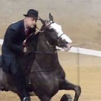 Brew City Classic Charity Horse Show