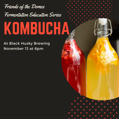 Fall Fermentation Series-Kombucha