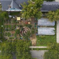 Growing Place: A Visual Study of Urban Farming