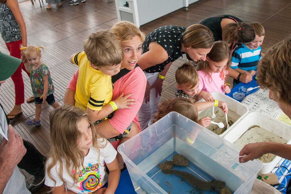 Wild About Wetlands Family Workshop