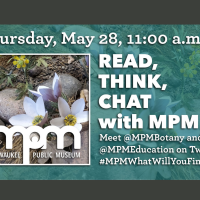 Read, Think, Chat with MPM