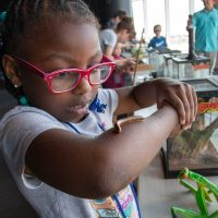 Discovery World Summer Camp: Monster Makers