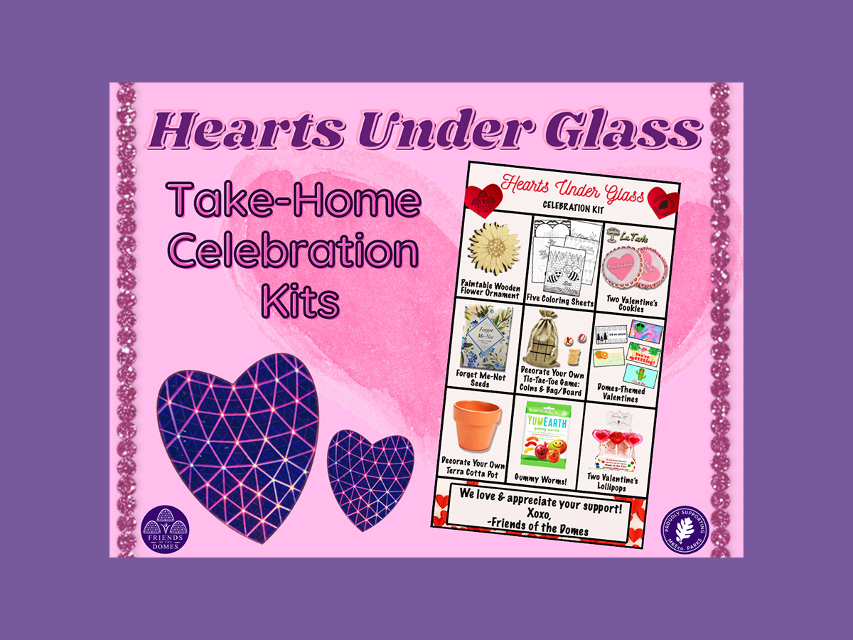 Hearts Under Glass