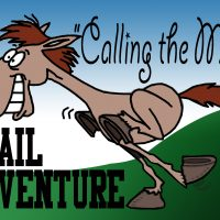 Calling The Mare Trail Adventure & CaniCross