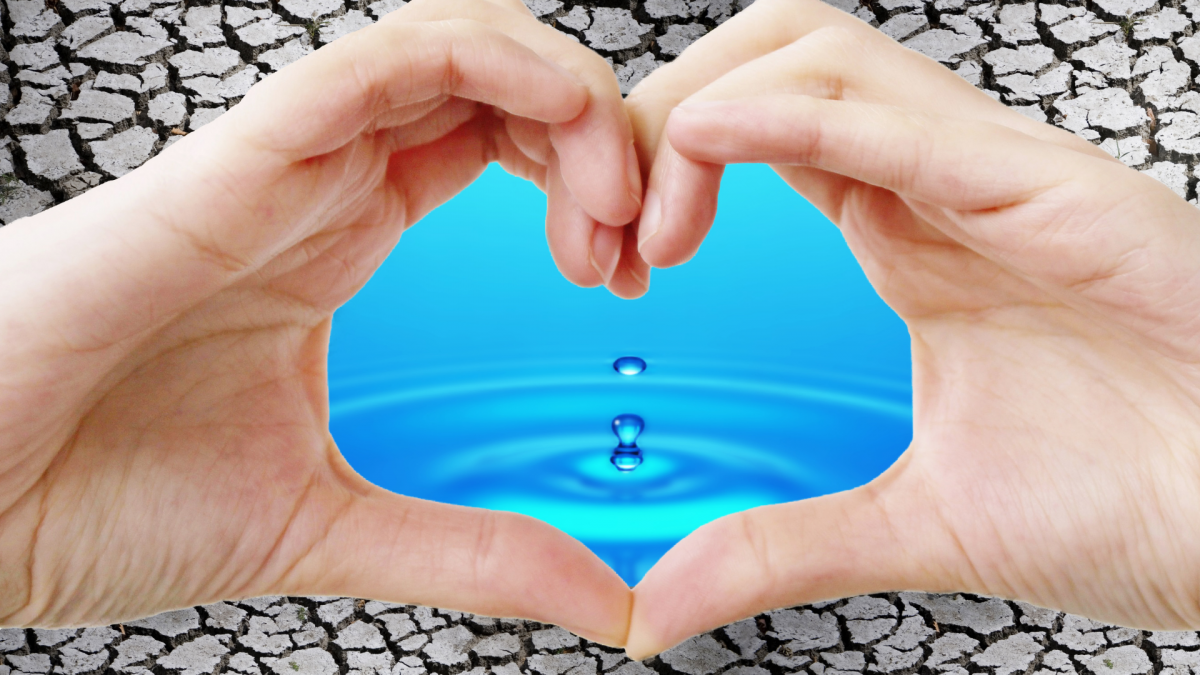 For the Love of Water