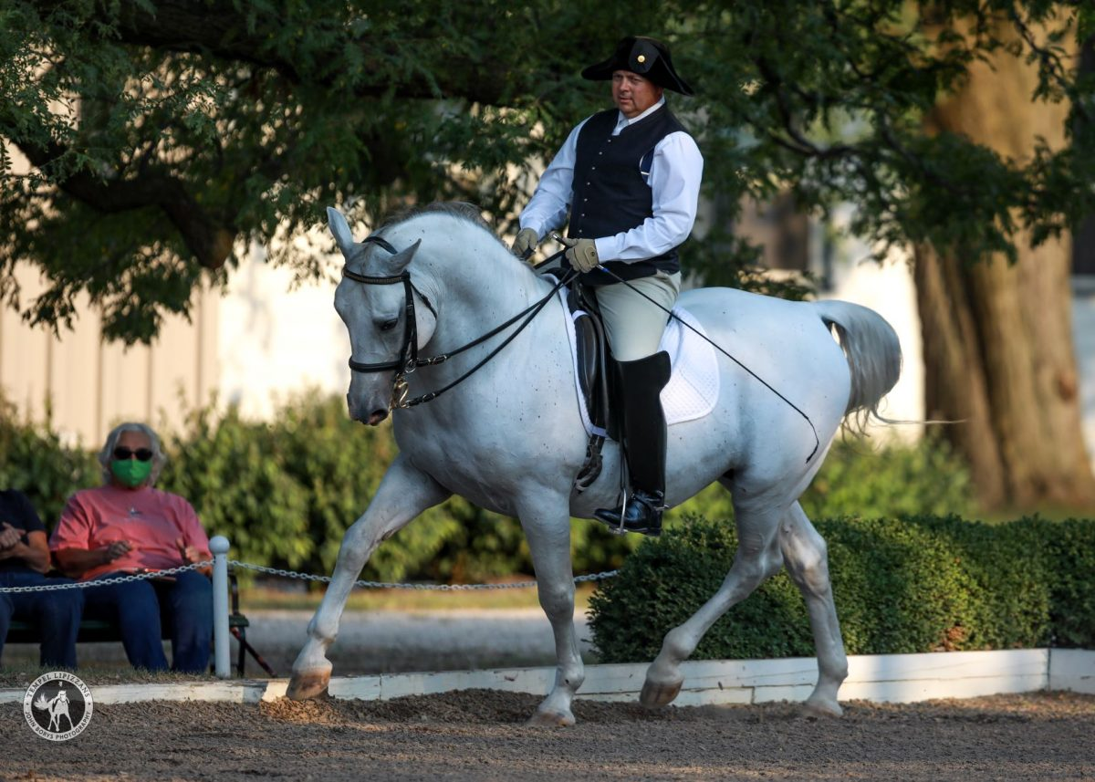 """How A Lipizzan Stallion Learns to Dance"" Presentation"