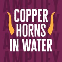 COPPER HORNS IN WATER
