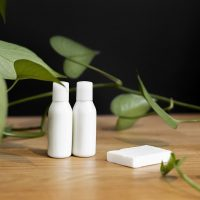 Skincare without Chemicals Class with Pat Molter