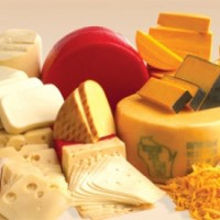 Wisconsin Blue Ribbon Cheese Fest