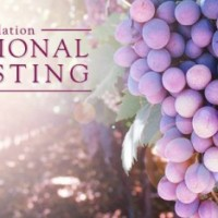 International Wine Tasting presented by The Arthritis Foundation