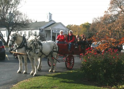 Christmas in the Grove presented by Elm Grove Woman's Club ...